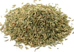 Buy Fennel Seed @ Herbosophy