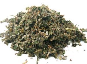 Purchase dried Raspberry Leaf Tea @ Herbosophy