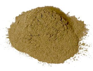 Buy Picrorhiza Powder