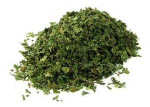 Buy Loose Cut Nettle Leaf or Capsules @ Herbosophy