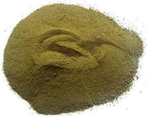 Buy Graviola Loose Powder or Capsules