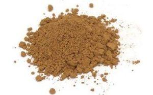 Buy Reishi Extract Powder & Capsules