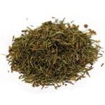 Buy Dried Chanca Piedra Capsules & Loose Tea