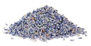 Buy organic Lavender tea, powder & Capsules @ Herbosophy